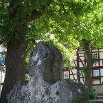 2008-06-05-Anger-Diedorf-(2)