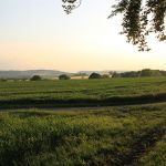 2010-06-13-Landschaft-Diedorf-(26)