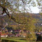 Lengenfeld-mit-Baum-2